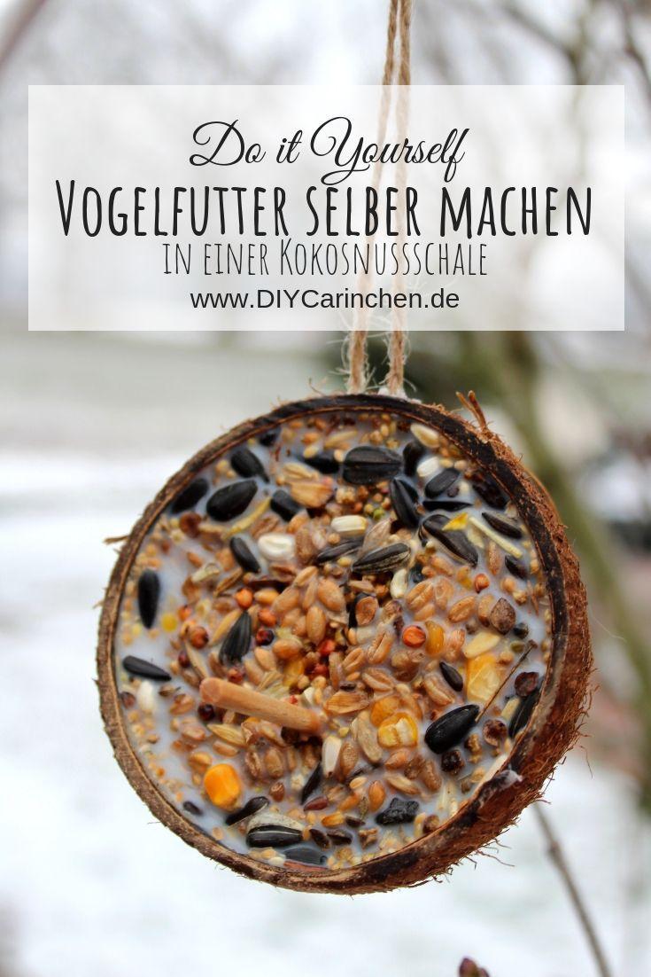 DIY Vogelfutter schnell und einfach selber machen - mit Kokosfett