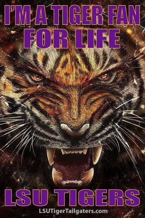 Pin By Jo Johnson On Jo S Fun Lsu Blue Dog Tiger Wallpaper Lsu Tigers Football Tiger