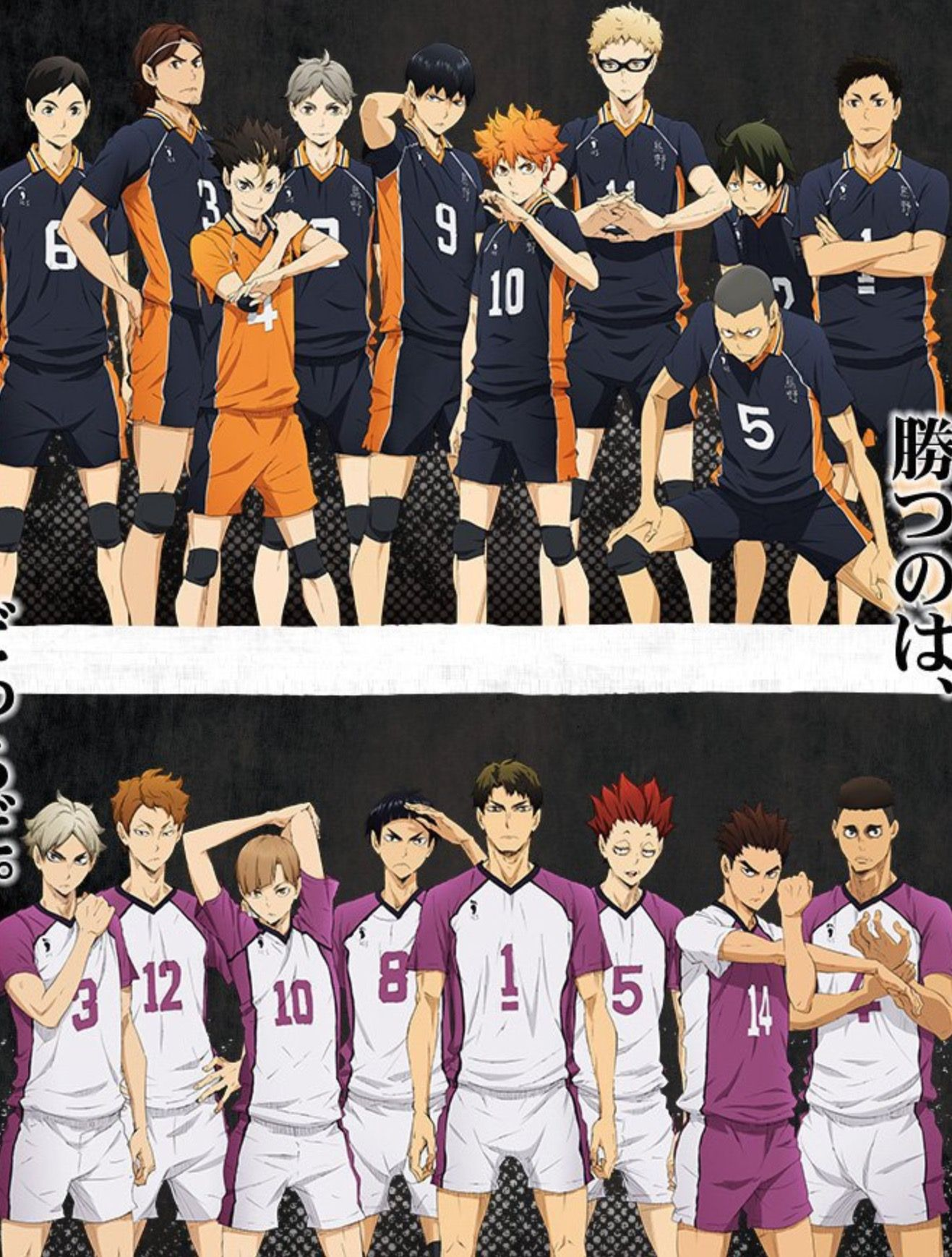 Pin By Ludivinevinckel On Haikyuu In 2020 Haikyuu Karasuno Haikyuu Shiratorizawa