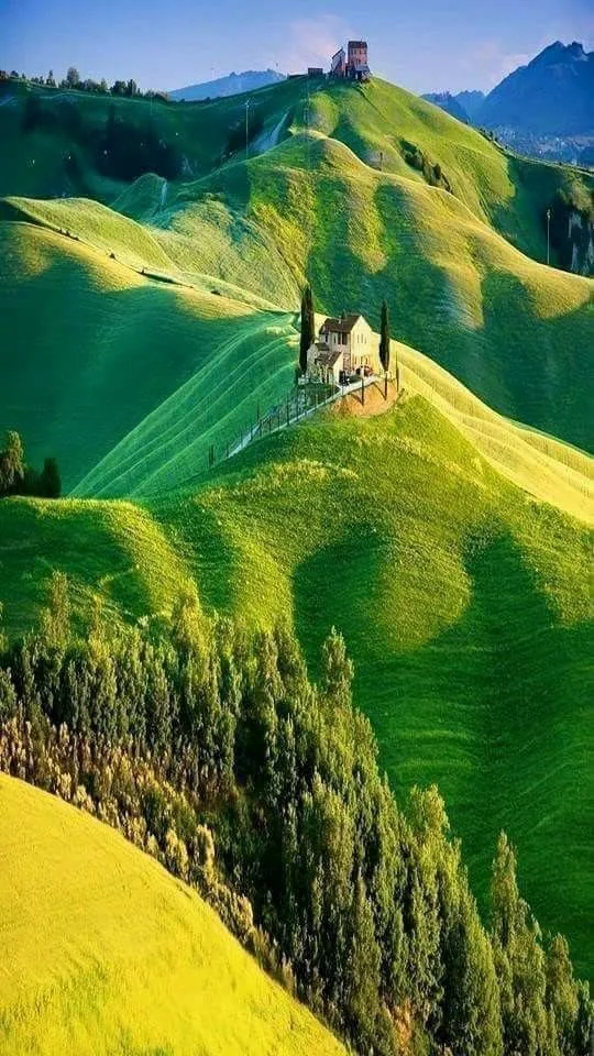 My Tuscania