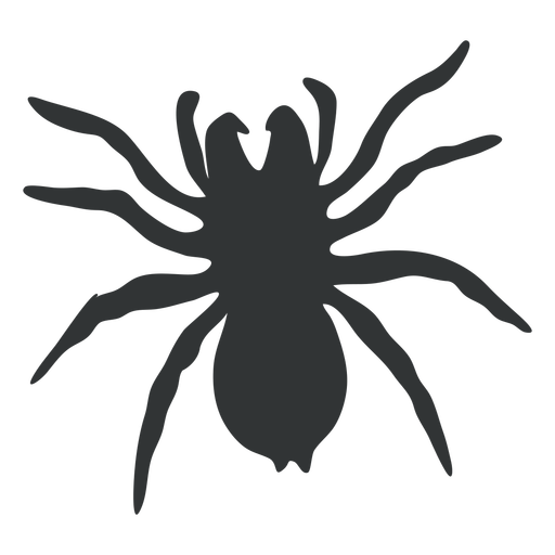 Spider Arthropod Animal Silhouette Free Vector Icons Designed By Freepik Animal Silhouette Silhouette Vector Silhouette Free