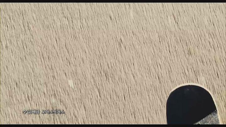 소녀의 몸에 갇힌 소년, 싱글맘 엄마, 레즈비언 할머니 너무 다른 우리들이 할 수 있는 최선은 뭘까  #캐롤 제작진의 신작   #어바웃레이 11...