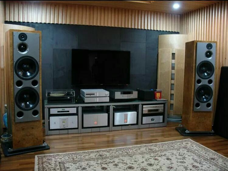 Atc200s powered by krell the best fucking set up ive ever seen money no option id have the system in a heartbeat love to just sit an wack the bueaty upto 11
