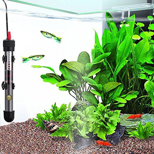 Image result for fish tank heater