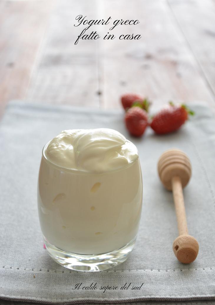 Ricette Yogurt Greco