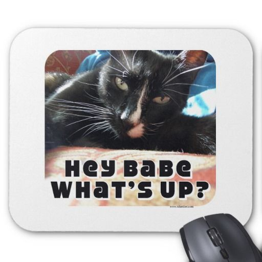 Hey Babe Flirty Cat Mouse Pad (With images) Cartoon gift