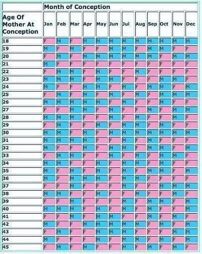 Chinese Birth Chart Peopledavidjoel