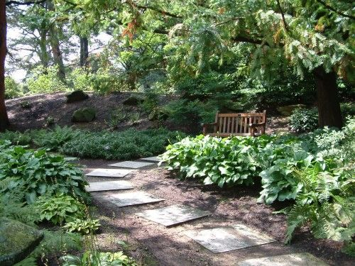 Ordinaire Elegant Shady Backyard Landscaping Ideas Garden Design Ideas For Shady Areas  Hotshotthemes