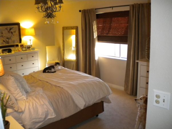Master bedroom in a mobile home re-do, Pink hi-lo carpet an ...