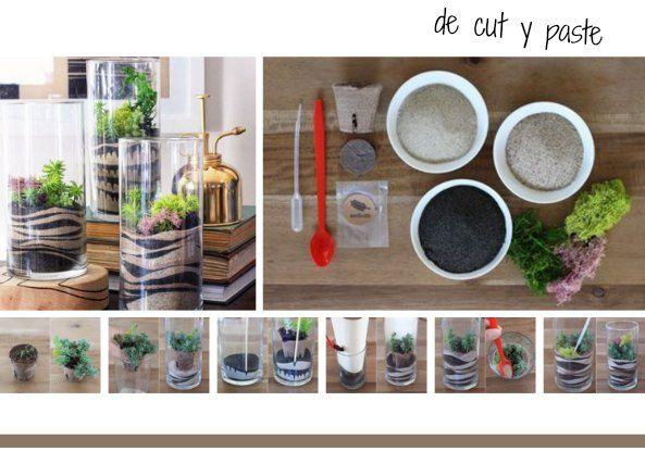 Enrhedando Como Hacer Un Terrario Con Dibujos En Arena Como Hacer Terrarios Cactus Y Suculentas Terrarios