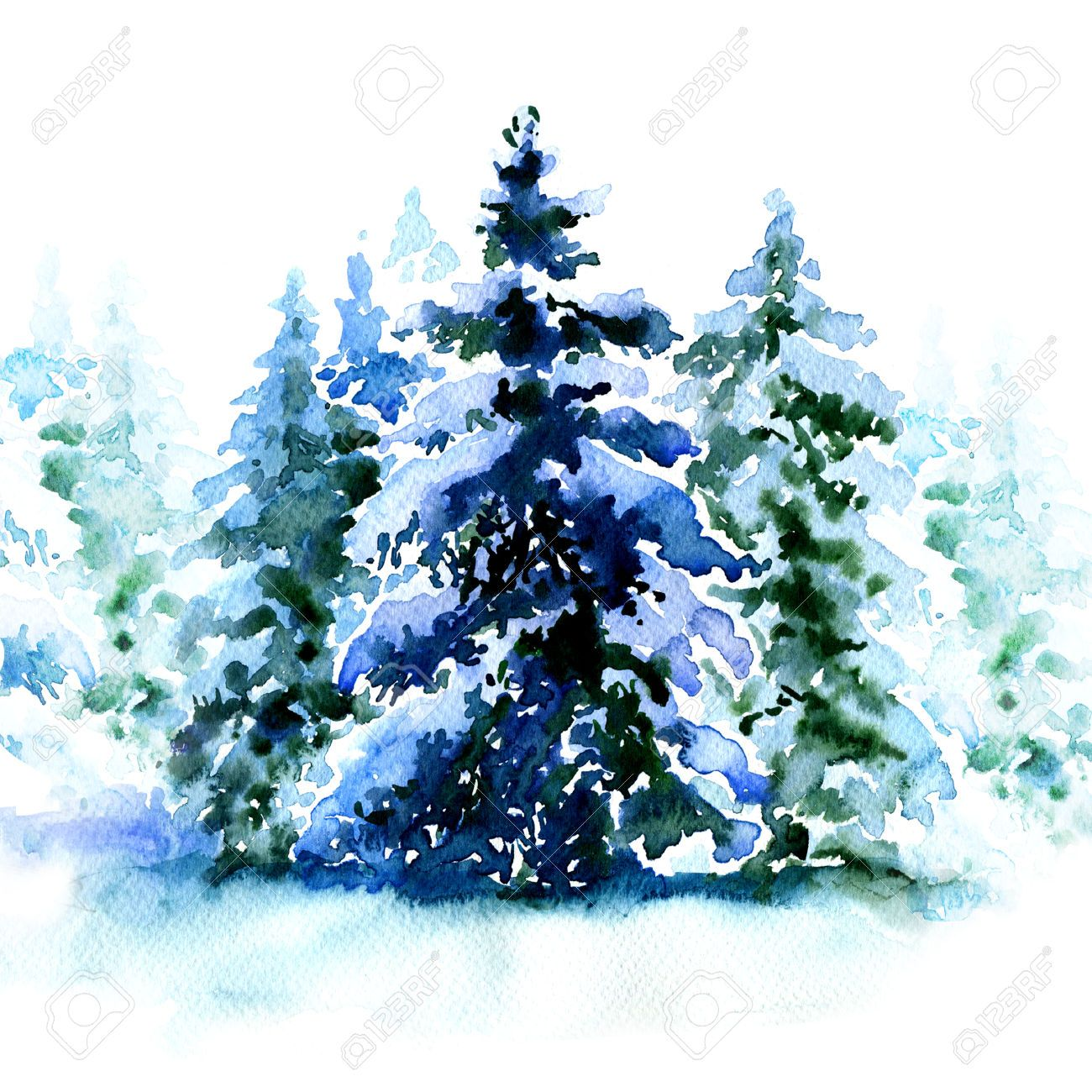 47983431 Group Of Christmas Trees Covered Snow In Winter Isolated