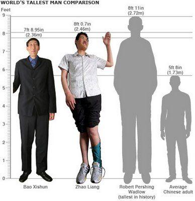 10 foot tall man google search eurydice pinterest. Black Bedroom Furniture Sets. Home Design Ideas
