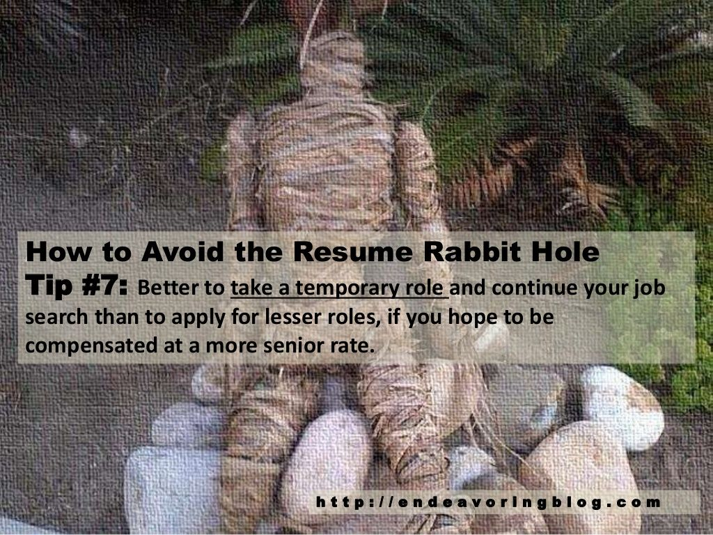 Resume Rabbit | How To Avoid The Resume Rabbit Hole Top 10 Tips Endeavoring