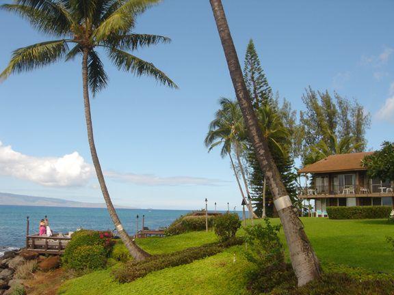 Polynesian Shores Maui Love These Condos Maui Places To Go Favorite Places