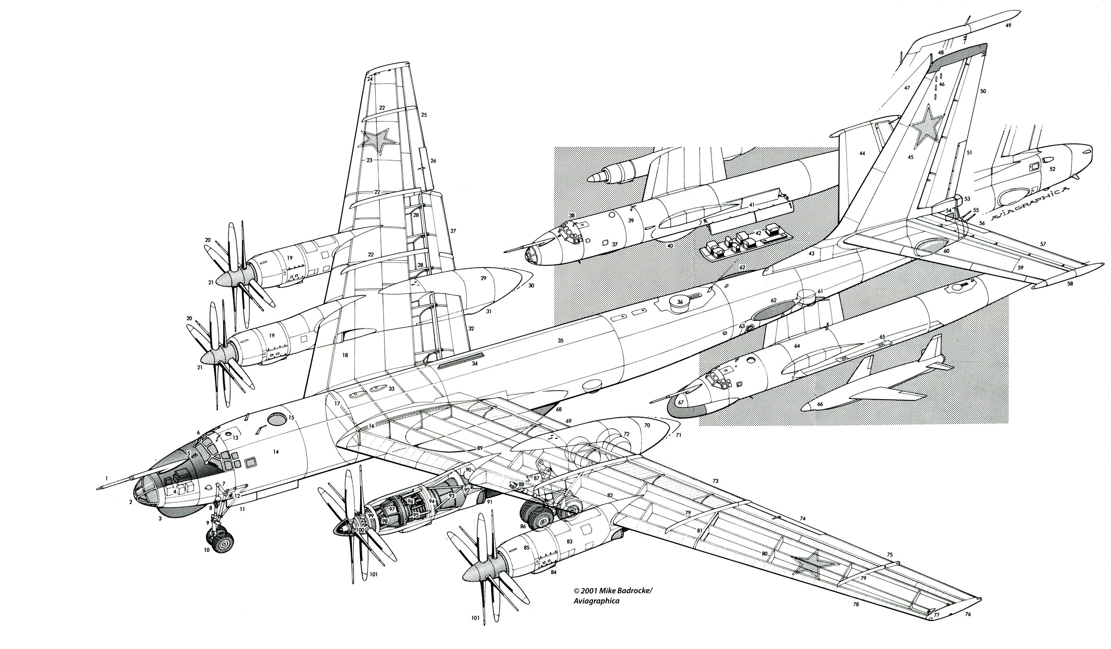 Referencesarlyecho Aviation Tupolev Tu 95