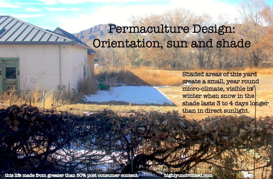 Permaculture Design: Orientation, sun and shade