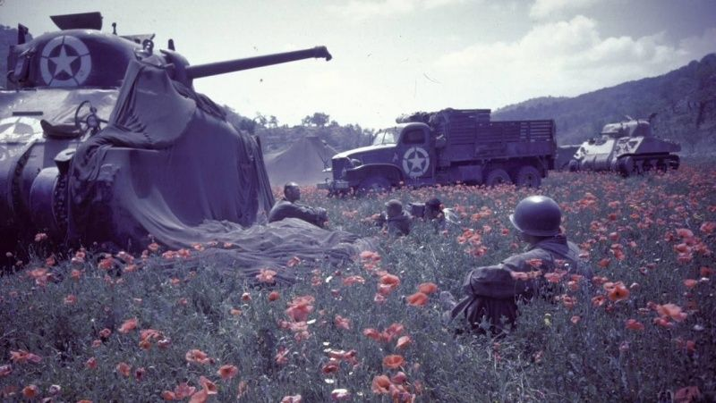 Soldiers Free French rest in a poppy field in the tank