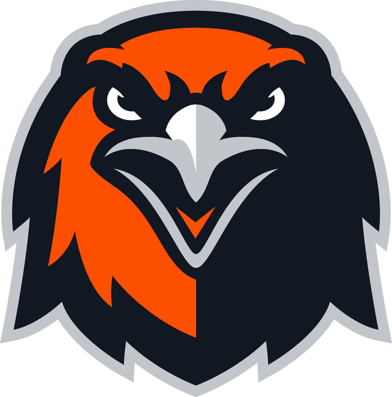 Pin By Chris Basten On Hawks Falcons Logos Mascot Design Sports Logo Inspiration Falcon Logo