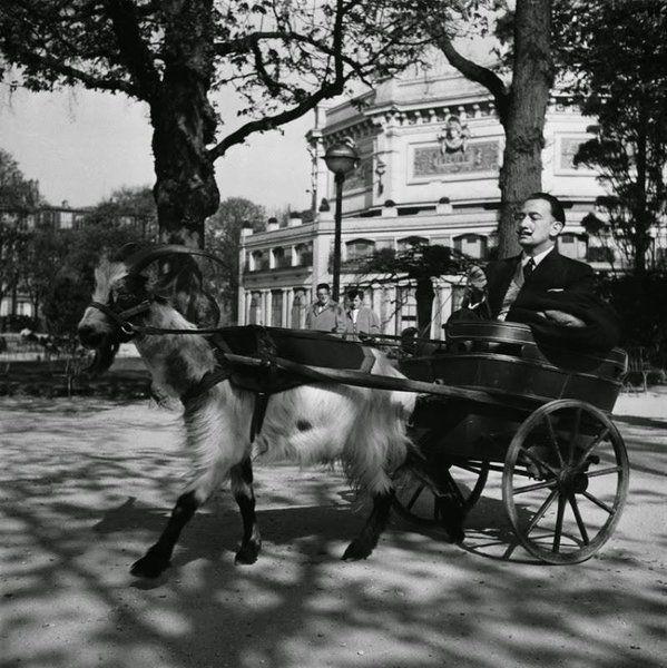 Dalí Imagen insertada