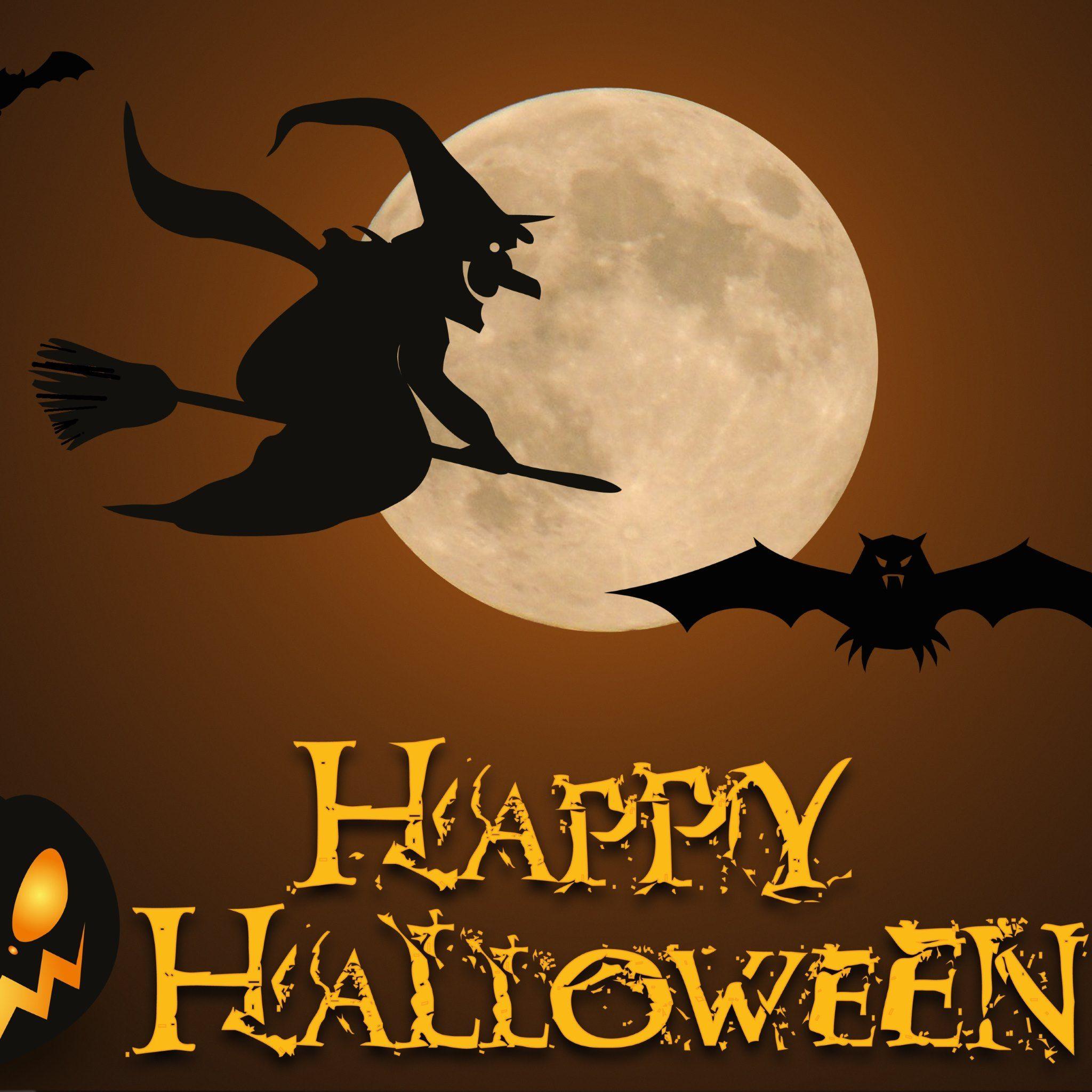 The Witch Of Halloween Wallpaper Image Free Artist Stefan Schweihofer License