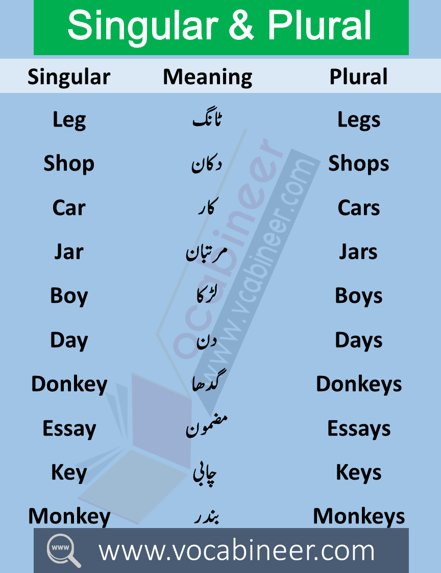 100 Singular Plural Nouns List Examples In Urdu Or Hindi With Pdf In 2020 Plurals Learn English Vocabulary Singular And Plural
