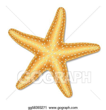 Vector Stock Starfish Stock Clip Art Gg58393271 Gograph Starfish Clip Art Vector Illustration