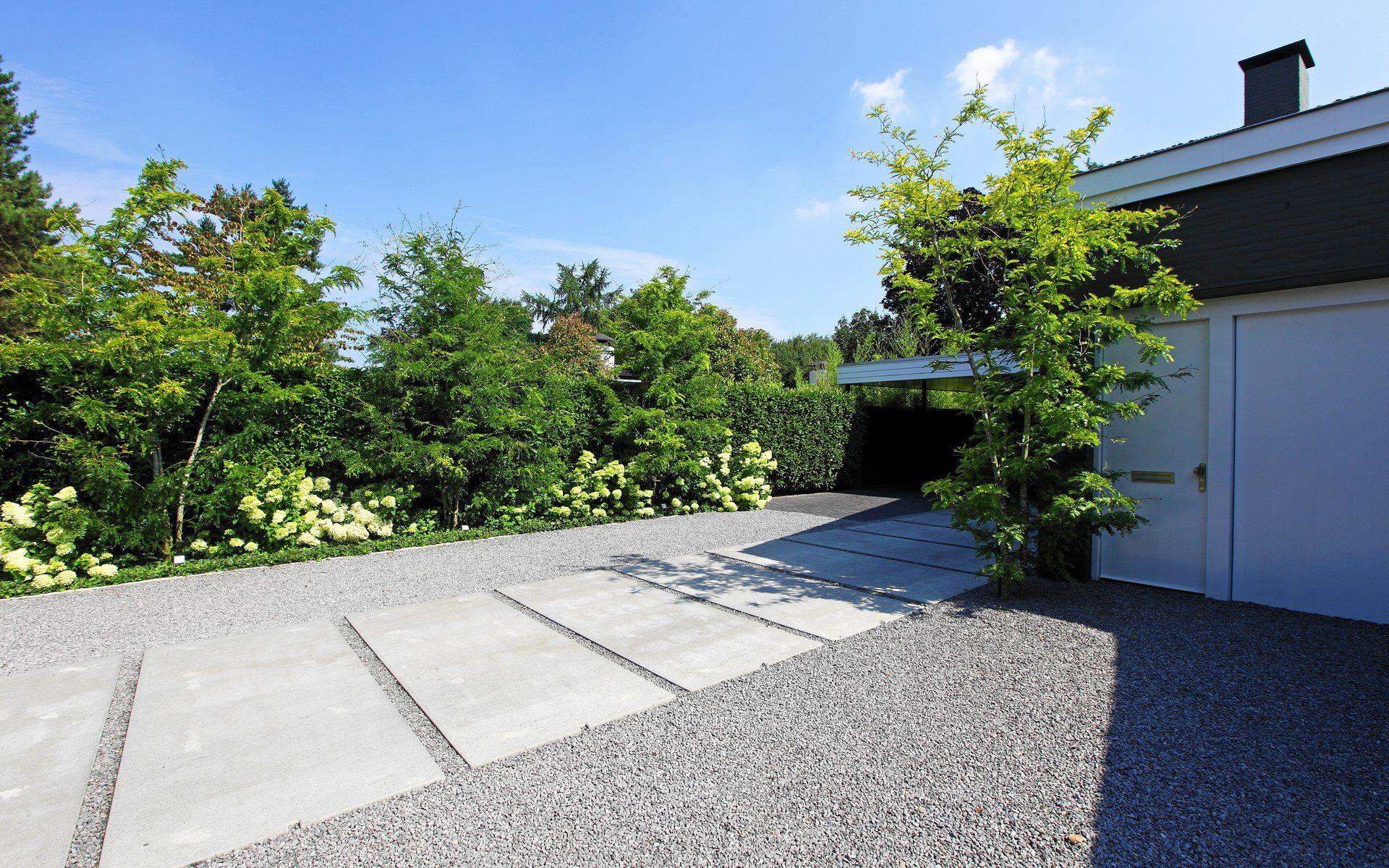 Moderne voortuin met entree grote betonplaten grijze split hein in