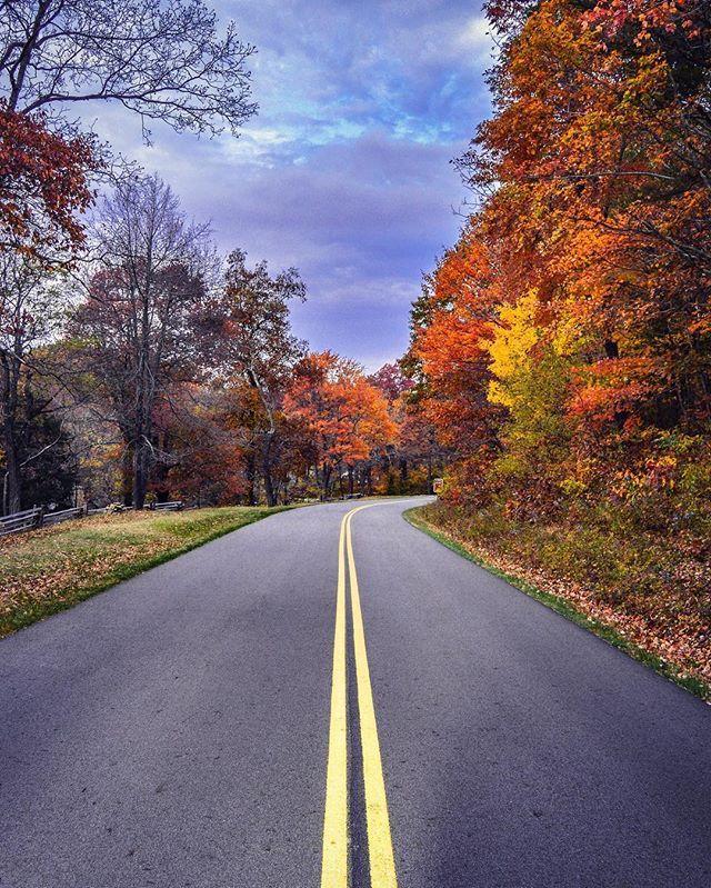 I love Fall in Virginia 🍁🍂