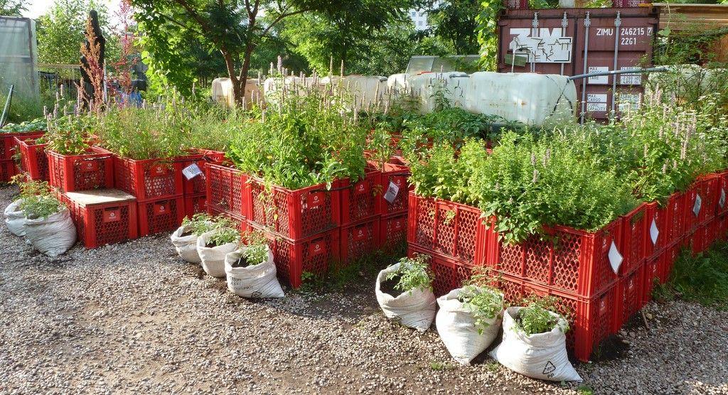 Terra Preta Wertvolle Erde Selber Herstellen Autarkieblog Wohnwagon Hochbeet Kompost Selbermachen