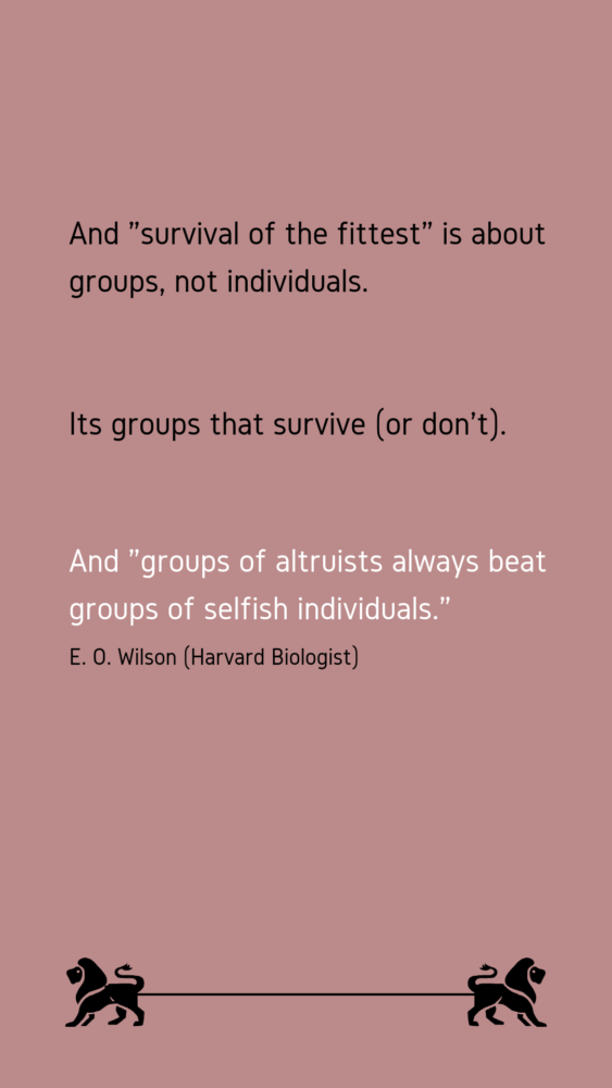 Survival Of The Fittest Is Not About The Meanest The Reluctant Skeptic Words Of Wisdom Quotes Wisdom Quotes Survival