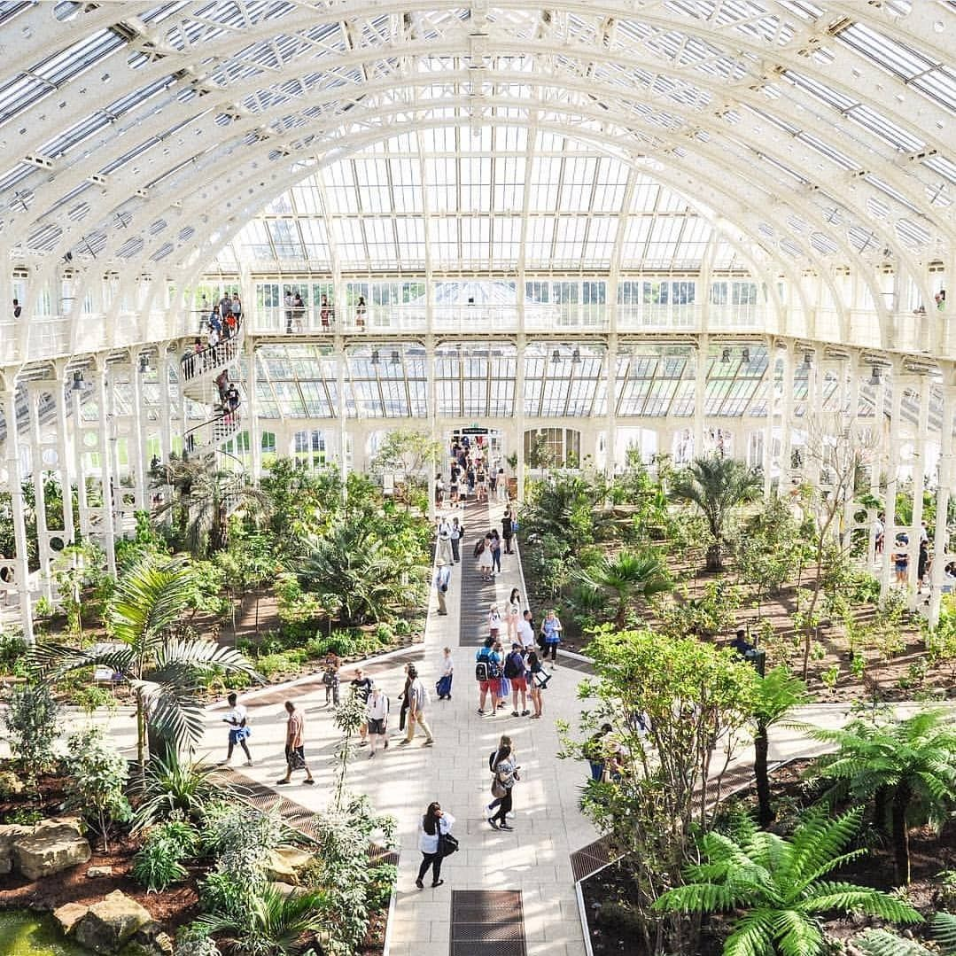 fea1312deca4cf4275ddc1c40d54bcc3 - Palm House Kew Gardens London England