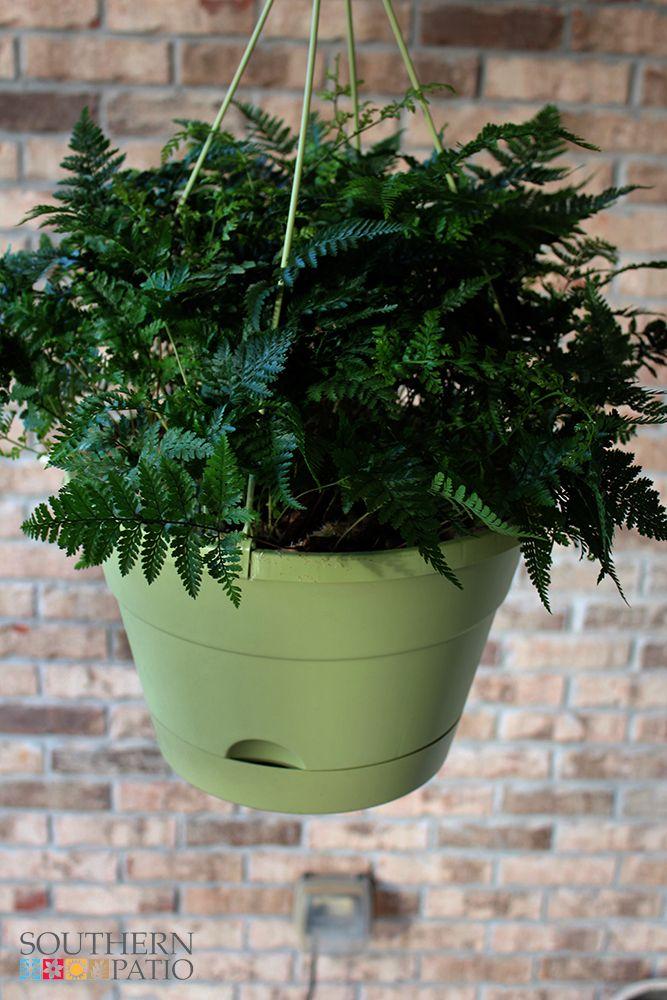 12 75 Newbury Self Watering Hanging Basket Black Planter