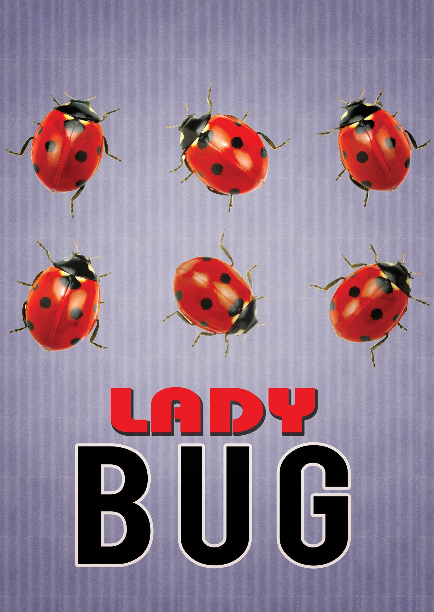 Ladybug The Movie Movie posters, Concept art, Movies