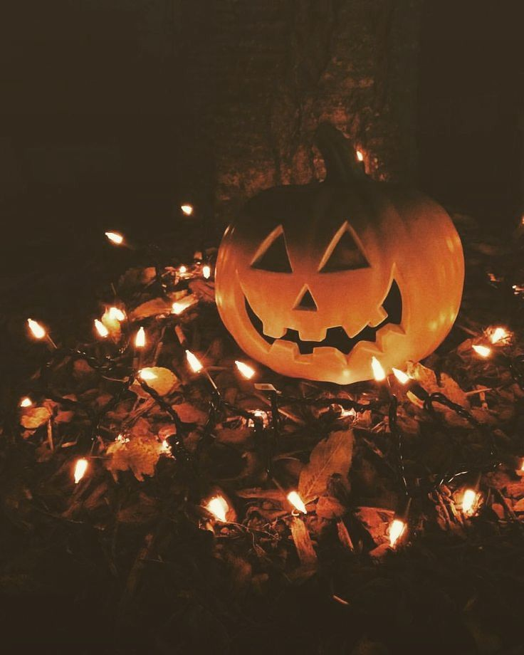 Repost whoops - #pumpkins #autumn #apples #flannels #candles #harvest #pine #fire #cozy #fall #boots #fashi… | Halloween photography,  Fall halloween, Fall wallpaper