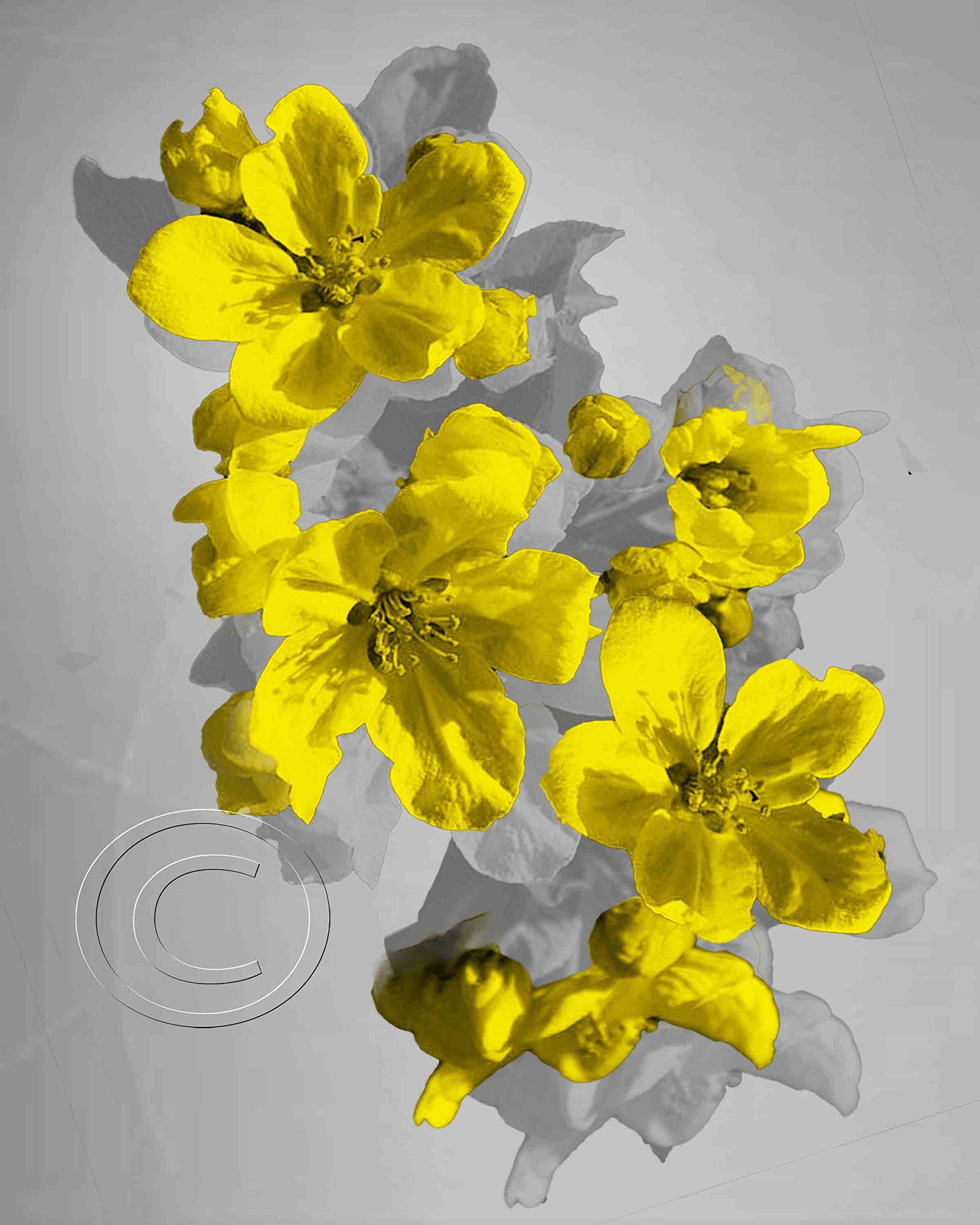 Excellent Floral Wall Art Decor Gallery - The Wall Art Decorations ...