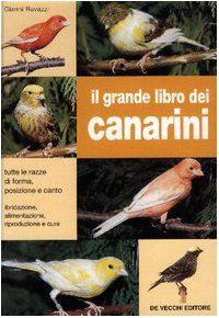 Scaricare Il grande libro dei canarini PDF Gratis in 2019