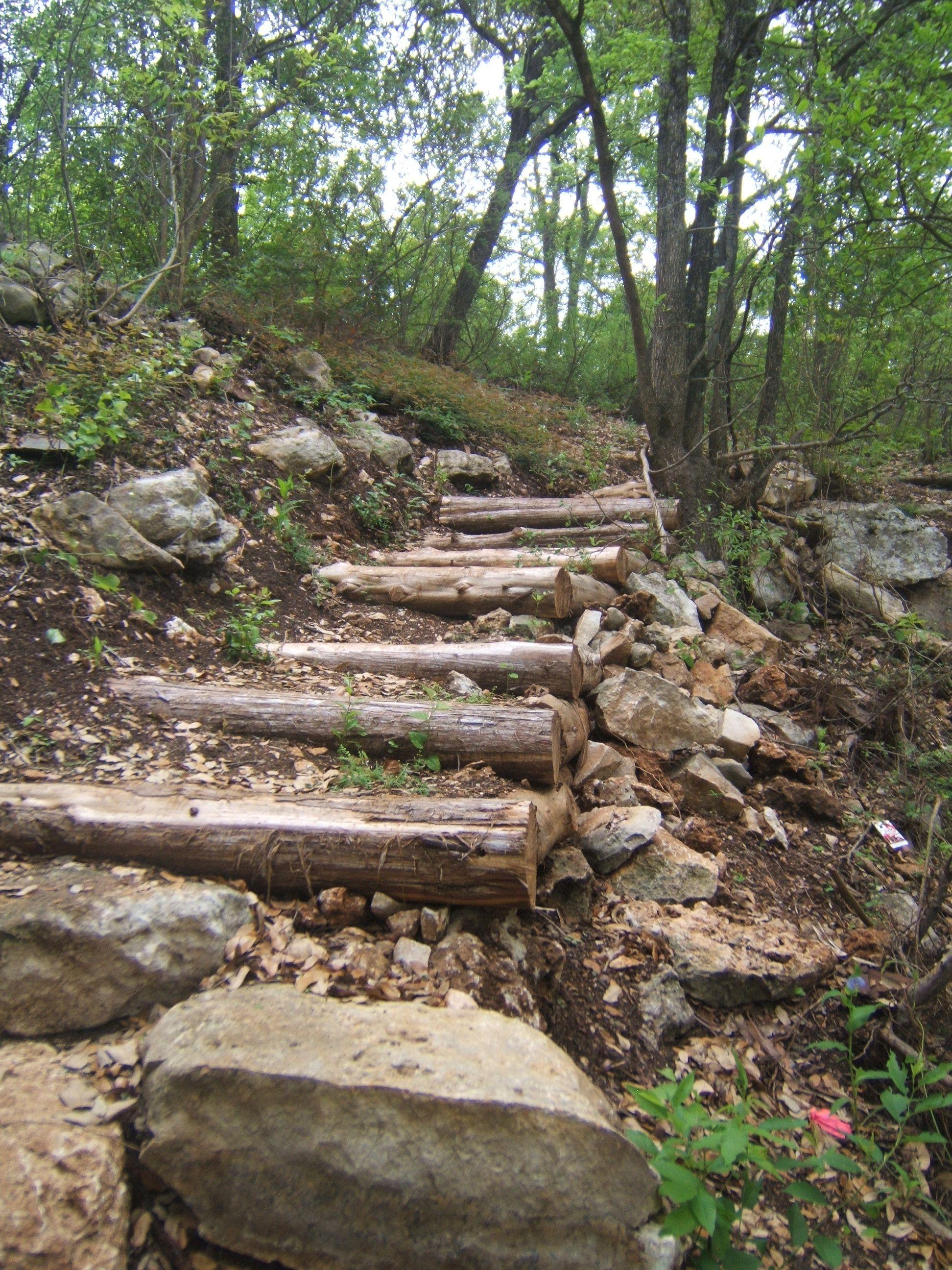Cedar Log Steps 1,944 2,592 Pixels