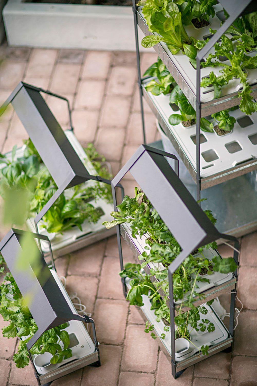 Für einen grüneren Alltag Neues Hydrokultursystem von Ikea