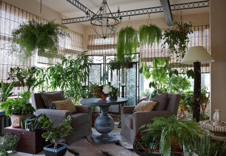 Plantes vertes dans le jardin d\'hiver à la maison- idée géniale ...