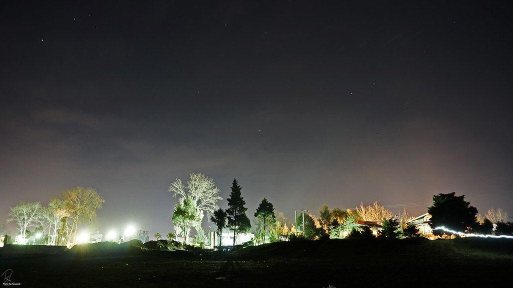 Night Lights Night Light Light In The Dark Street Trees