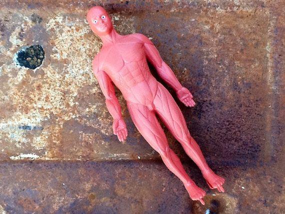 Vintage anatomy model skeleton body parts by KitschVintageClothes, $20.00