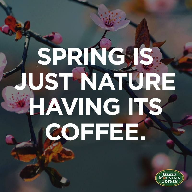 spring is just nature having its coffee we can t decide between