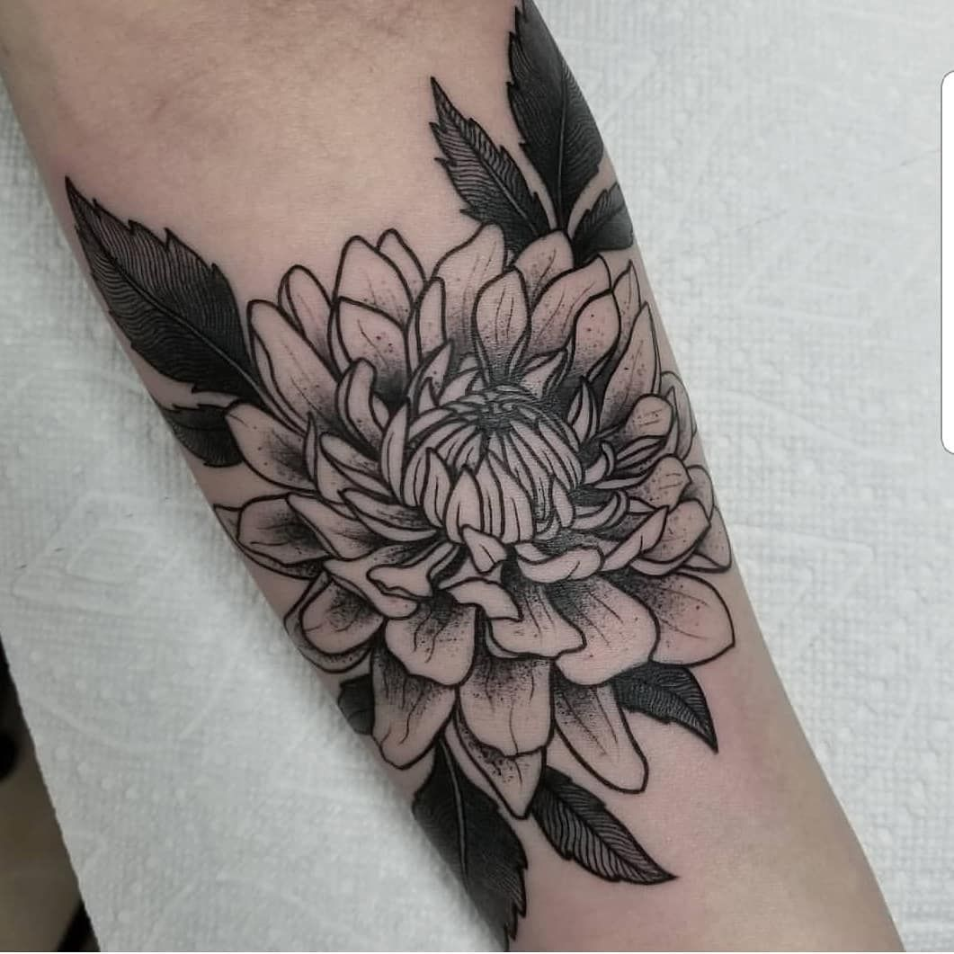 Dahlia Tattoo Done By Marissatattoos Dahlia Dahliatattoo Tattoo Tattoos Flower Flowers Dahlia Tattoo Dahlia Flower Tattoos Arm Tattoos Black And Grey