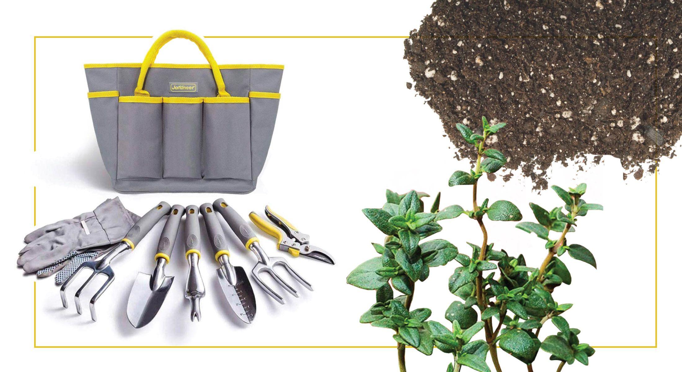 Homegrown: Easy Kitchen Herb Garden Ideas