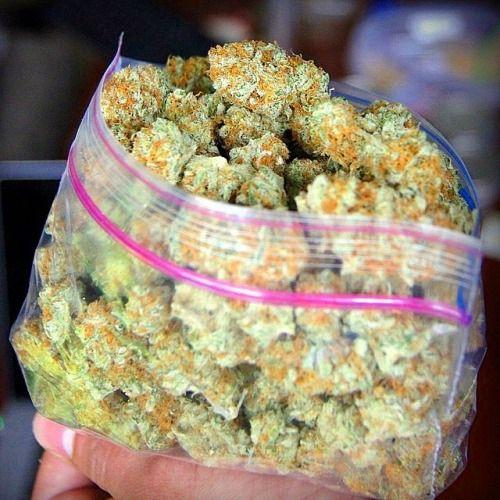 2 Oz Of Gold Bud L Medical Marijuana Quality Matters