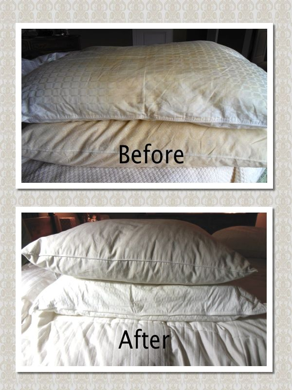 I didn't know I am supposed to wash pillows every 3 months! I didn't follow Martha Stewart's instruction from my pinterest.