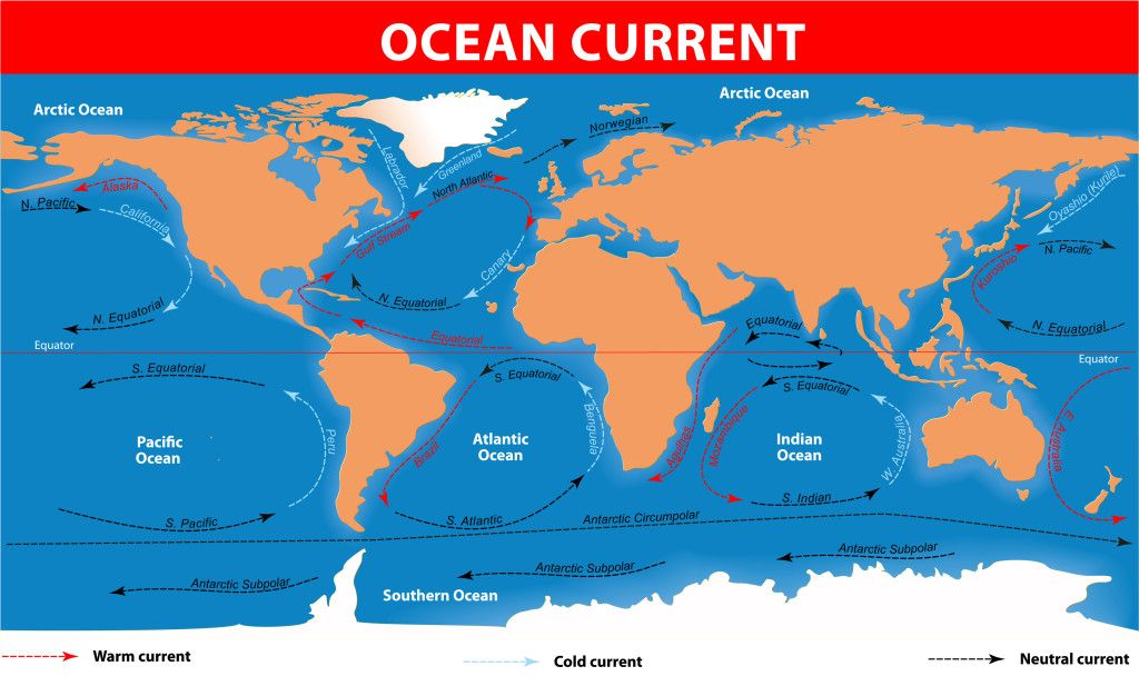 Ocean Currents | Physical Science Facts | Pinterest
