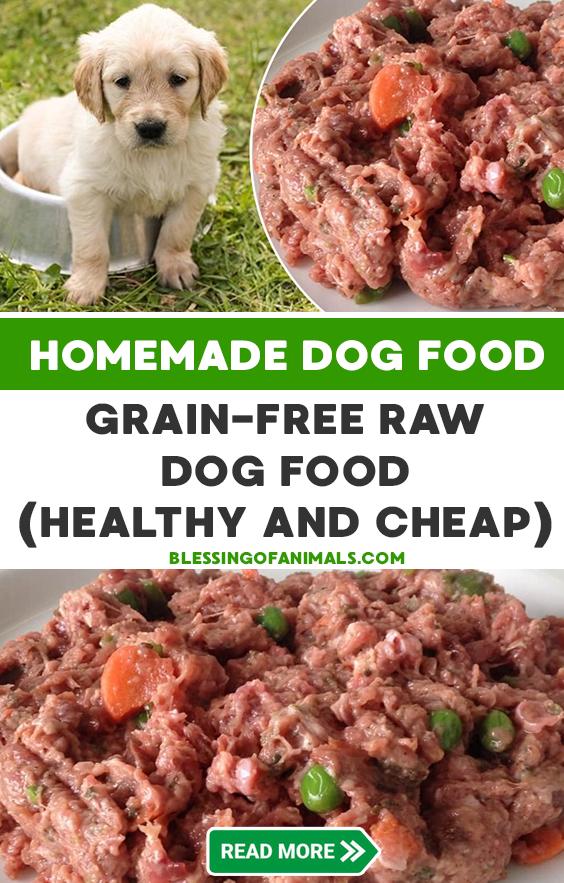 Homemade Grain Free Raw Dog Food Healthy And Cheap Raw Dog Food Recipes Dog Food Recipes Healthy Dog Food Recipes