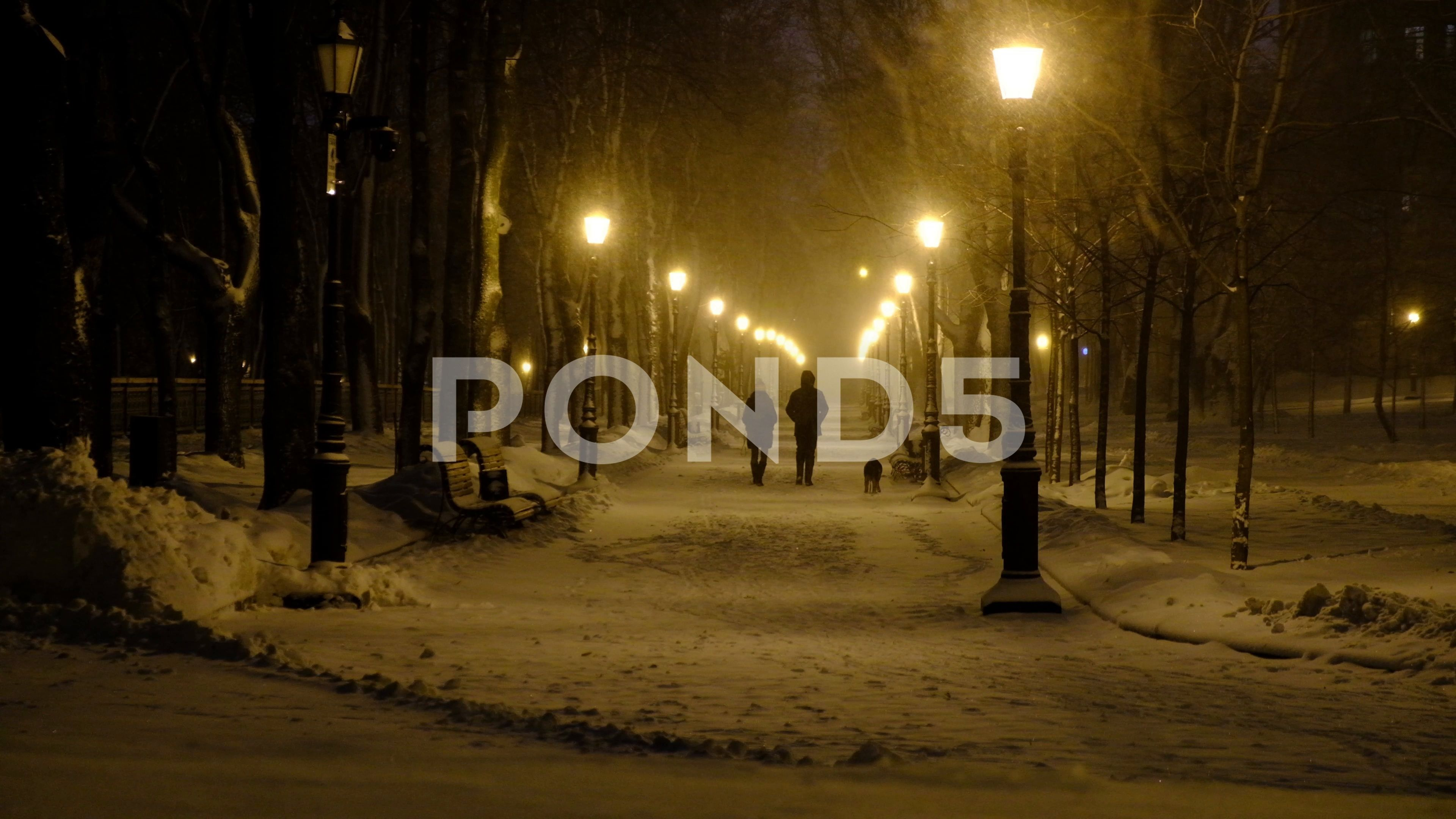 Footage Of Snow Falling On Winter Night City Park People With Dog Walking On Stock Footage Ad Winter Night Falling Footag Night City Park City Winter Night