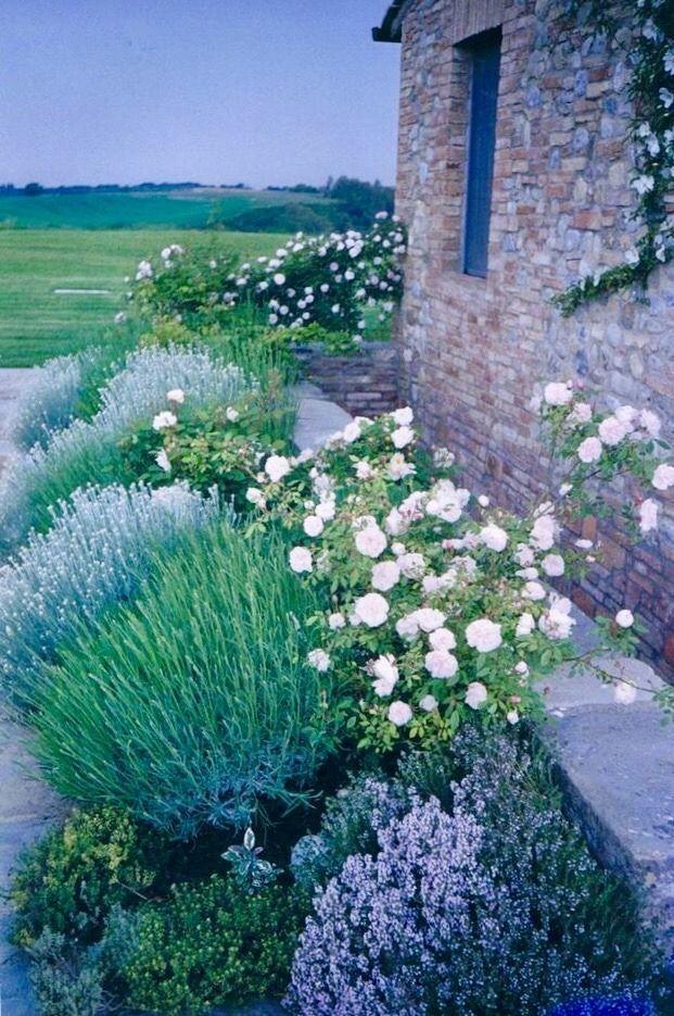 For front wall, side garden landscapefrontyarddriveway